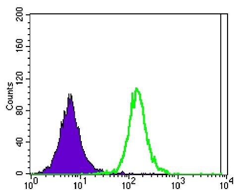 Ataxin 1 Antibody in Flow Cytometry (Flow)