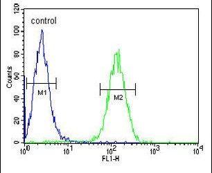 AXIN2 Antibody in Flow Cytometry (Flow)