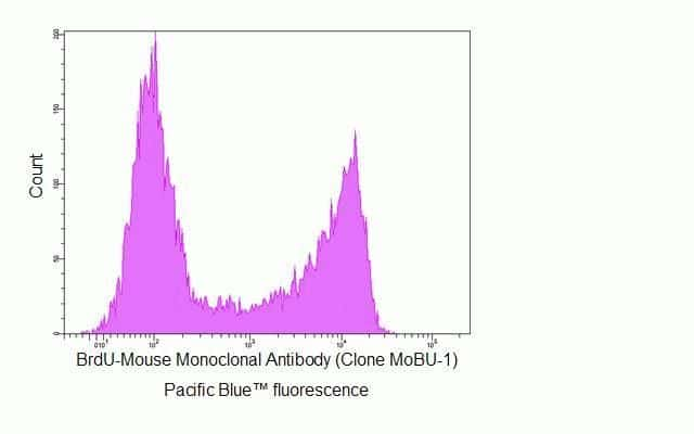 BrdU Antibody in Flow Cytometry (Flow)