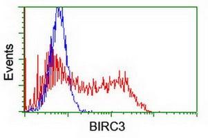 BIRC3 Antibody in Flow Cytometry (Flow)