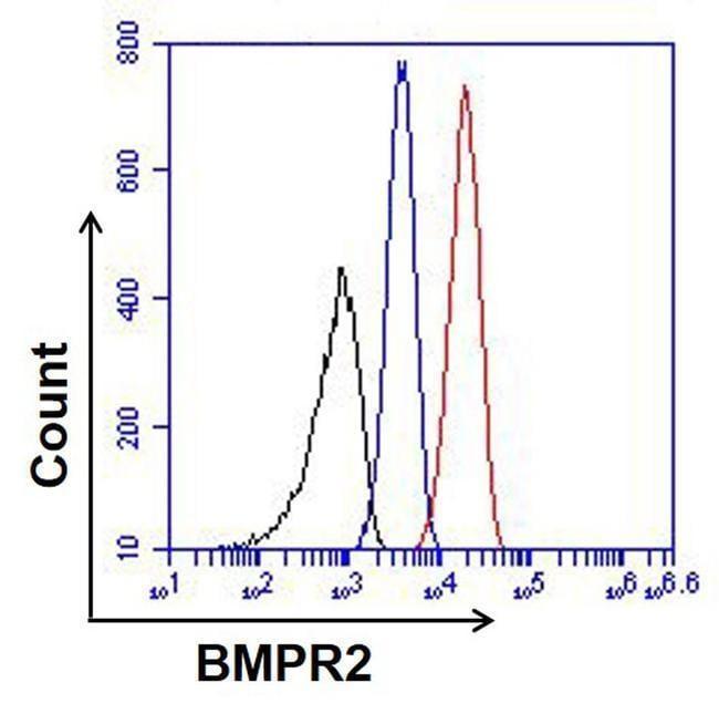 BMPR2 Antibody in Flow Cytometry (Flow)