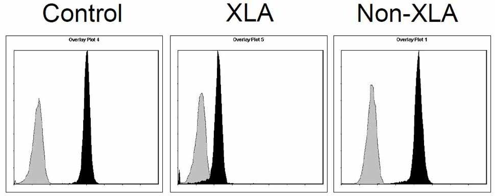 BTK Antibody in Flow Cytometry (Flow)