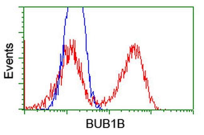 BUB1B Antibody in Flow Cytometry (Flow)