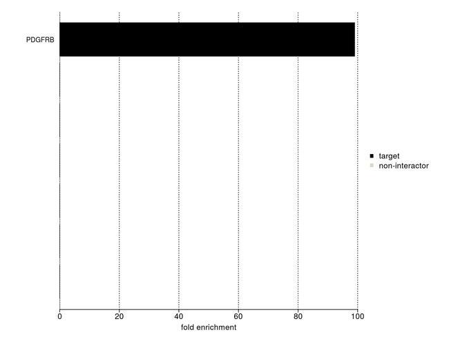 PDGFRB Antibody in IP-MS
