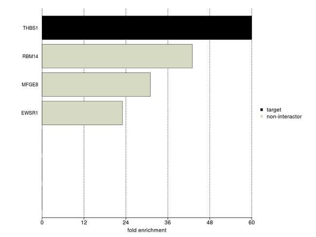 Thrombospondin 1 Antibody in IP-MS