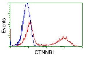 Beta-catenin Antibody in Flow Cytometry (Flow)