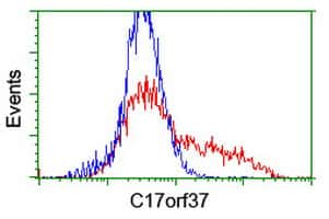 C17orf37 Antibody in Flow Cytometry (Flow)