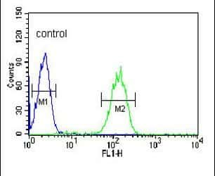 Carbonic Anhydrase VB Antibody in Flow Cytometry (Flow)