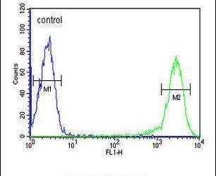 Calcitonin Receptor Antibody in Flow Cytometry (Flow)