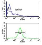 CCDC130 Antibody in Flow Cytometry (Flow)