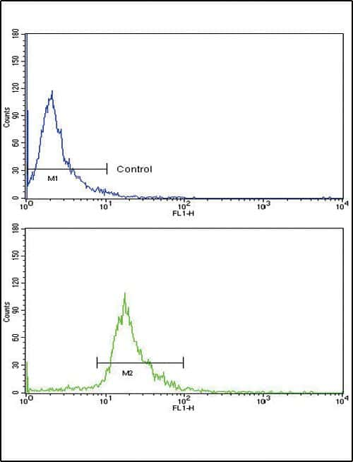 CD105 Antibody in Flow Cytometry (Flow)
