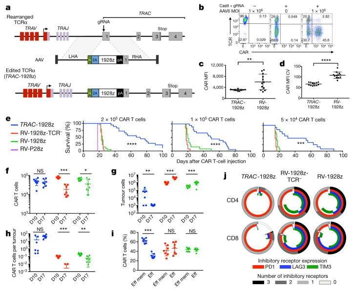 CD45RA Antibody