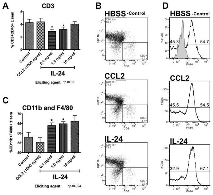CD45 Antibody