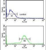 Cdc73 Antibody in Flow Cytometry (Flow)