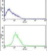 CDK4 Antibody in Flow Cytometry (Flow)