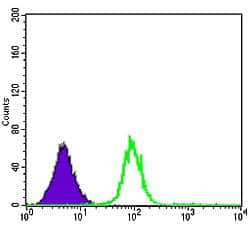 CDK5 Antibody in Flow Cytometry (Flow)