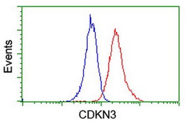CDKN3 Antibody in Flow Cytometry (Flow)