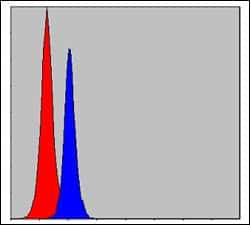 C/EBP beta Antibody in Flow Cytometry (Flow)