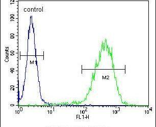 CHCHD2 Antibody in Flow Cytometry (Flow)