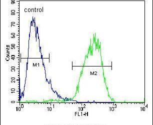 CHPT1 Antibody in Flow Cytometry (Flow)