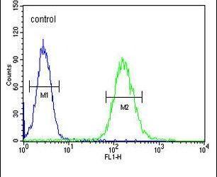 Clathrin Heavy Chain Antibody in Flow Cytometry (Flow)