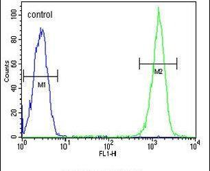 CMTM7 Antibody in Flow Cytometry (Flow)