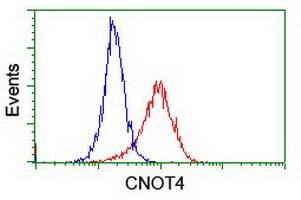 CNOT4 Antibody in Flow Cytometry (Flow)