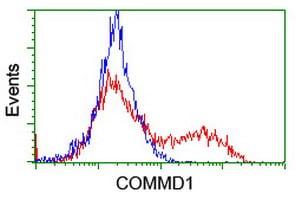 COMMD1 Antibody in Flow Cytometry (Flow)