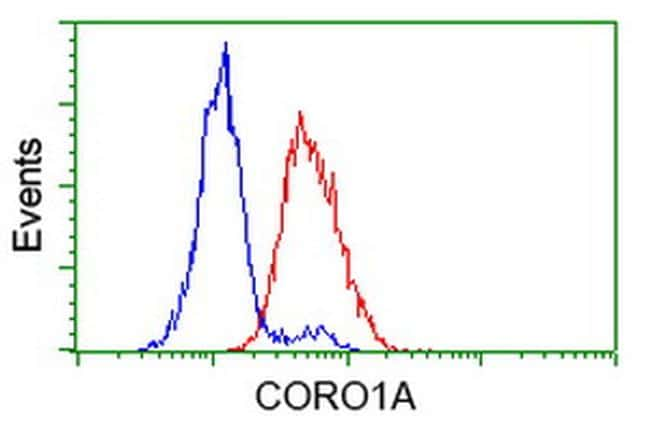 CORO1A Antibody in Flow Cytometry (Flow)