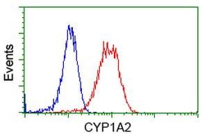 CYP1A2 Antibody in Flow Cytometry (Flow)
