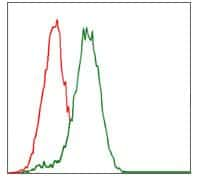 CYP3A4 Antibody in Flow Cytometry (Flow)