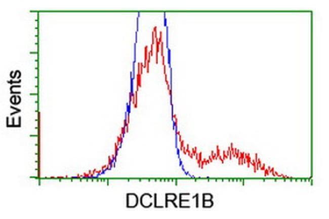 DCLRE1B Antibody in Flow Cytometry (Flow)