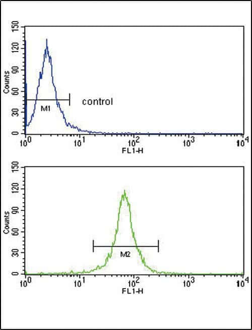 Decorin Antibody in Flow Cytometry (Flow)