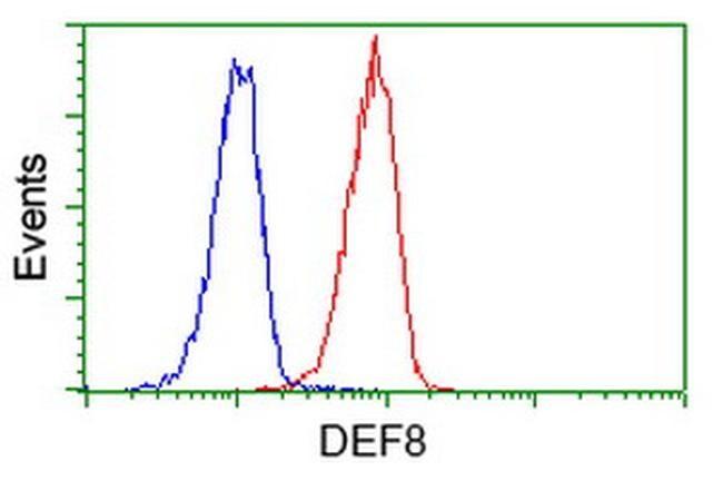 DEF8 Antibody in Flow Cytometry (Flow)