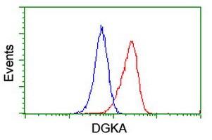 DGKA Antibody in Flow Cytometry (Flow)