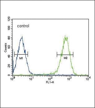 DLAT Antibody in Flow Cytometry (Flow)