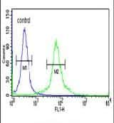 DLG7 Antibody in Flow Cytometry (Flow)