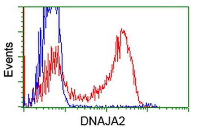 DNAJA2 Antibody in Flow Cytometry (Flow)