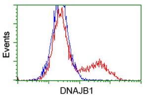 DNAJB1 Antibody in Flow Cytometry (Flow)