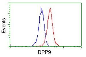 DPP9 Antibody in Flow Cytometry (Flow)