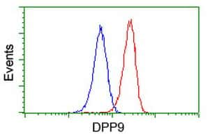 DPP9 Antibody in Flow Cytometry (Flow)