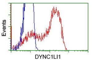 DYNC1LI1 Antibody in Flow Cytometry (Flow)