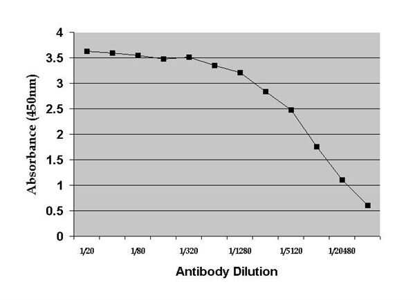 Dehydroepiandrosterone Antibody in ELISA (ELISA)