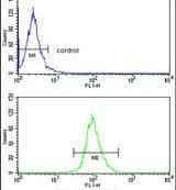 ELOVL6 Antibody in Flow Cytometry (Flow)