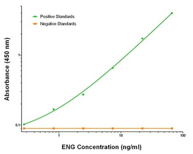ENG Antibody in ELISA (ELISA)