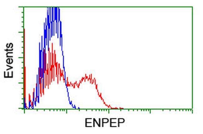 ENPEP Antibody in Flow Cytometry (Flow)