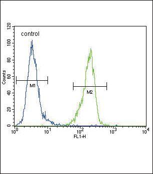 ENPP2 Antibody in Flow Cytometry (Flow)