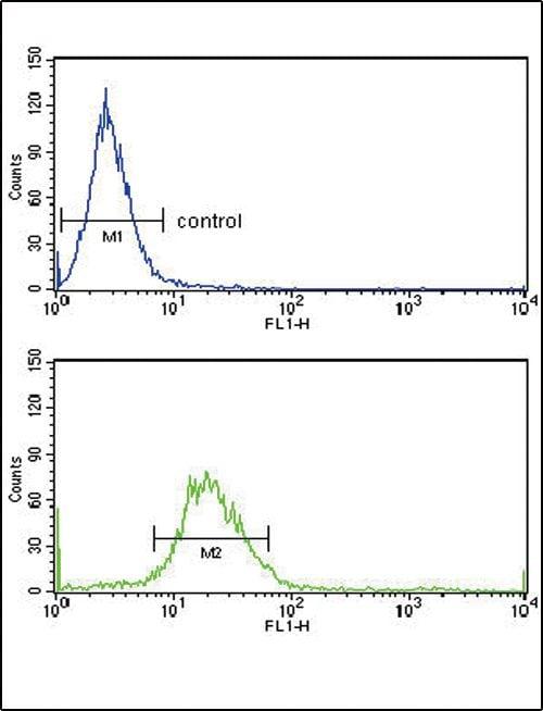 EXT2 Antibody in Flow Cytometry (Flow)