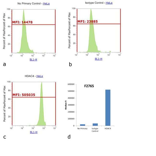 Rabbit IgG (H+L) Cross-Adsorbed Antibody in Flow Cytometry (Flow 9dec8cbb5b1