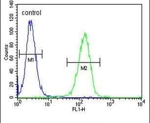 FAM105B Antibody in Flow Cytometry (Flow)